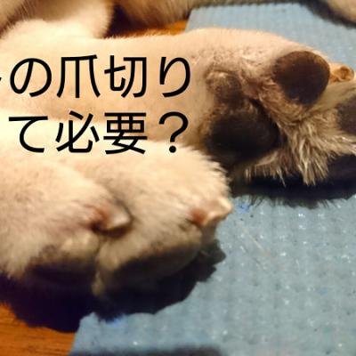 ペットの爪切りって必要??